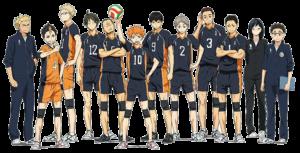 Karasuno_Team_haikyuu_paraotakus